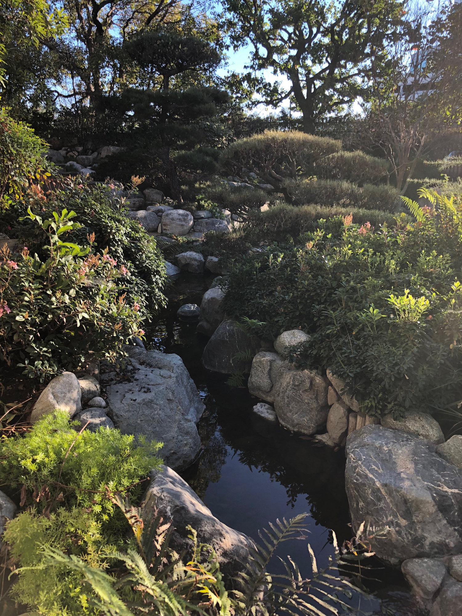 it is a beautiful albeit small japanese garden hidden in little tokyo i had been going to little tokyo for years and - James Irvine Japanese Garden